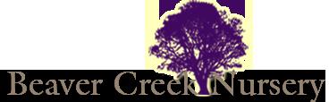 Beaver Creek Nursery